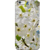 As White as Snow iPhone Case/Skin