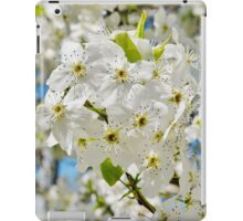 As White as Snow iPad Case/Skin