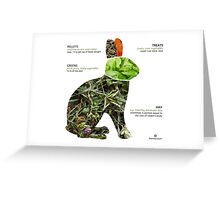 healthy rabbit diet Greeting Card