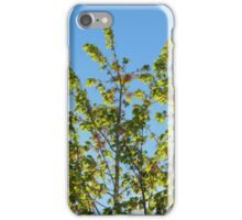 Nature-The Tree Outside iPhone Case/Skin