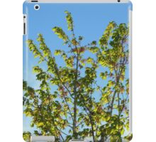 Nature-The Tree Outside iPad Case/Skin