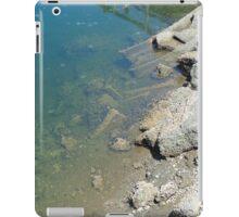 A Long Walk Off A Short Pier iPad Case/Skin