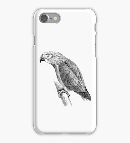 Vintage Gray Parrot Bird Illustration Retro 1800s Black and White Birds Grey Parrots Image iPhone Case/Skin