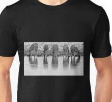 Zebra - Reflection and Iconic Black and White Nature Unisex T-Shirt