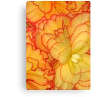 Soft Petal Pattern Abstract Canvas Print