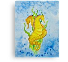 Seahorses by Leslie Berg 2011 Canvas Print