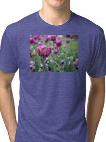Tulip Garden Tri-blend T-Shirt