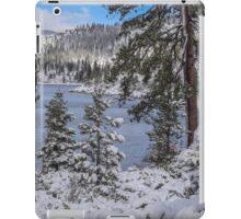 Winter Wonderland - Lake Tahoe iPad Case/Skin
