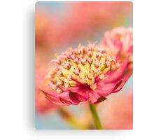 Soft Pink Flower Abstract Canvas Print
