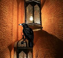 Crow Sits On The Night Lantern No.1 by Zehda
