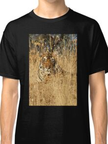 Sub-Adult Male Bengal Tiger Classic T-Shirt