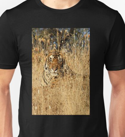 Sub-Adult Male Bengal Tiger Unisex T-Shirt