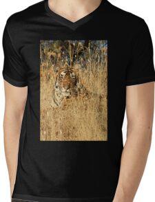 Sub-Adult Male Bengal Tiger Mens V-Neck T-Shirt