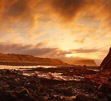 Speke Wreck, Phillip Island, Victoria, Australia by Michael Boniwell