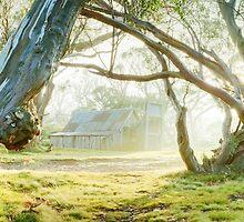 Foggy Wallace Hut, Falls Creek, Victoria, Australia by Michael Boniwell