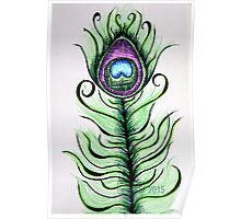 Whimsical Peacock Feather Poster
