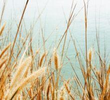 Grass By The Ocean Sticker