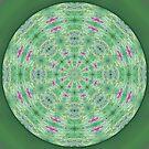 Ruby Ziolite Mandala 2 by haymelter