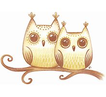 Sweet owls Photographic Print