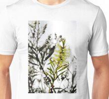 Golden Bottlebrush Unisex T-Shirt