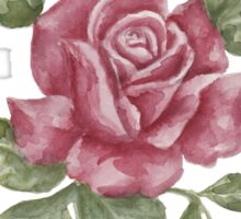 Beautiful Pink Rose Sticker