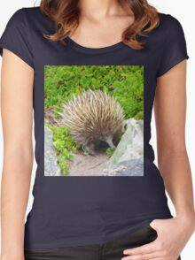 A echidna on food hunt Women's Fitted Scoop T-Shirt