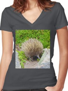 A echidna on food hunt Women's Fitted V-Neck T-Shirt