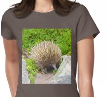 A echidna on food hunt Womens Fitted T-Shirt