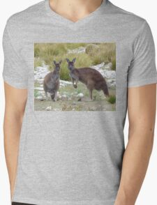 Kangaroo mum with kid on Kangaroo Island Mens V-Neck T-Shirt