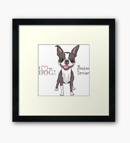 Smiling dog Boston Terrier  Framed Print
