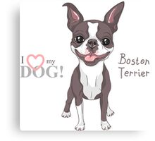 Smiling dog Boston Terrier  Canvas Print
