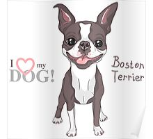 Smiling dog Boston Terrier  Poster