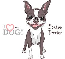 Smiling dog Boston Terrier  Photographic Print