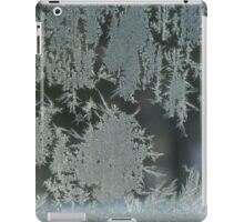 Frost Party iPad Case/Skin