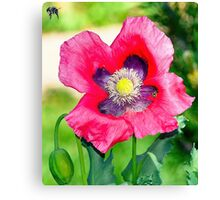 Zions National Park - Bee Mine Canvas Print
