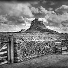 Lindisfarne Castle, Holy Island by Colin Metcalf