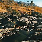 River Flowing Through Dry Grassland (Chapada dos Veadeiros NP, Brazil) by visualspectrum