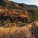 Dry Mountainous National Park Landscape by visualspectrum