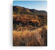 Dry Mountainous National Park Landscape Canvas Print