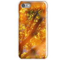 Autumn colors iPhone Case/Skin