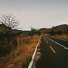 Full Moon Over Tarmac Road in National Park by visualspectrum