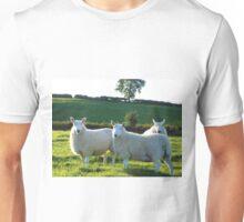 Beautifull Sheep Unisex T-Shirt
