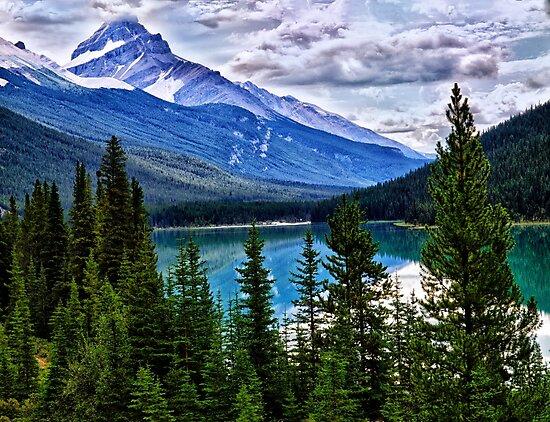 Jasper National Park by Kathy Weaver