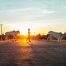Silhouette of Boy Leading Cattle Across Road at Sunset in Burmese Countryside by visualspectrum