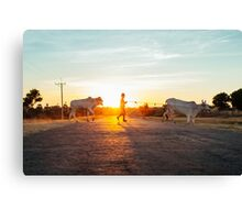 Silhouette of Boy Leading Cattle Across Road at Sunset in Burmese Countryside Canvas Print