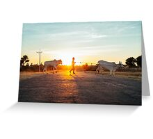 Silhouette of Boy Leading Cattle Across Road at Sunset in Burmese Countryside Greeting Card