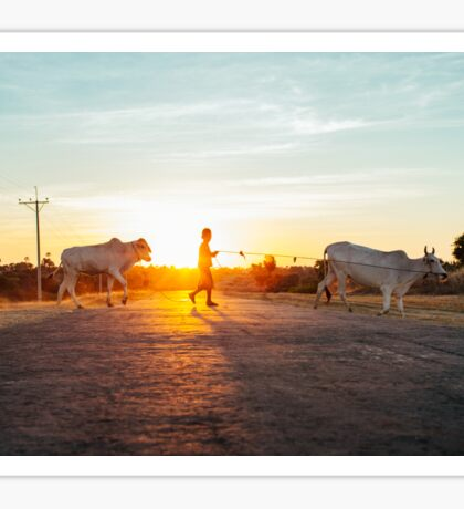 Silhouette of Boy Leading Cattle Across Road at Sunset in Burmese Countryside Sticker