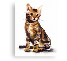 Cat 01 Canvas Print