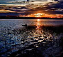 "Sunset On St. Mary""s Bay by Kathy Weaver"