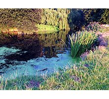 Colourful English countryside landscape  Photographic Print